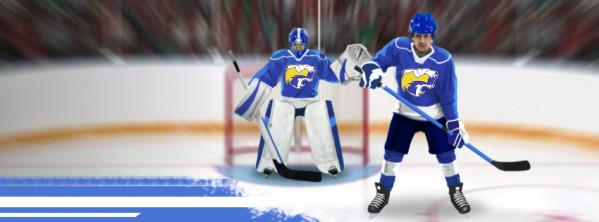 Une ligue HCLM dans hockeymanager!