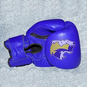 hclm_gants_boxe_kick-boxing