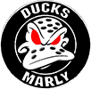 marly_ducks